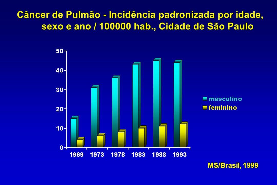 Câncer de Pulmão - Incidência padronizada por idade,