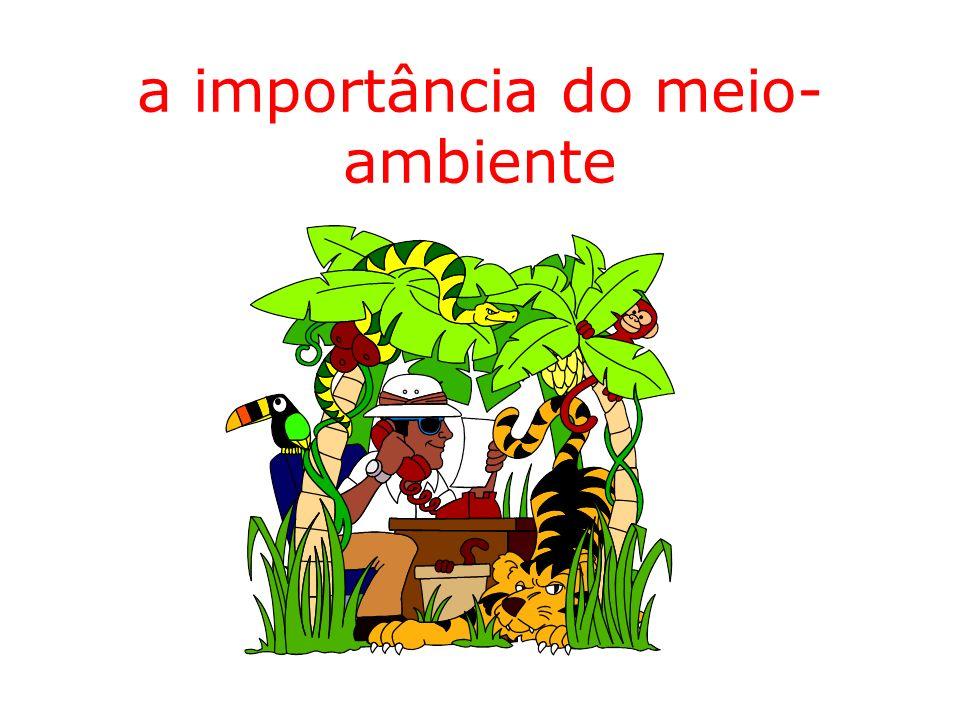 a importância do meio-ambiente