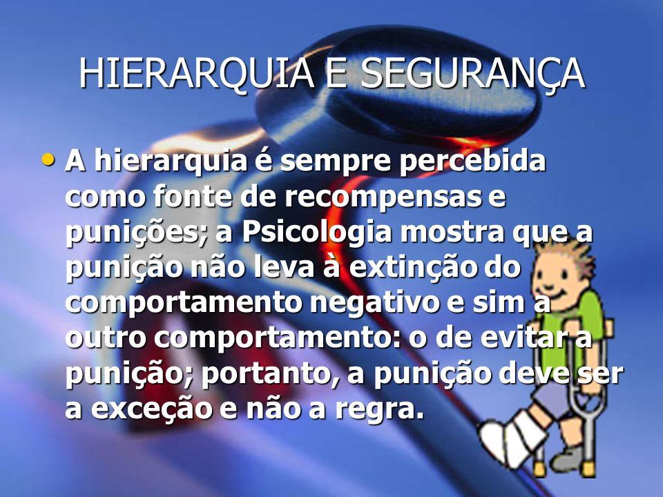 HIERARQUIA E SEGURANÇA