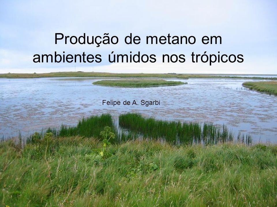 Produção de metano em ambientes úmidos nos trópicos