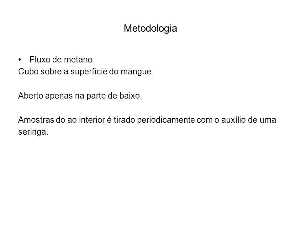Metodologia Fluxo de metano Cubo sobre a superfície do mangue.