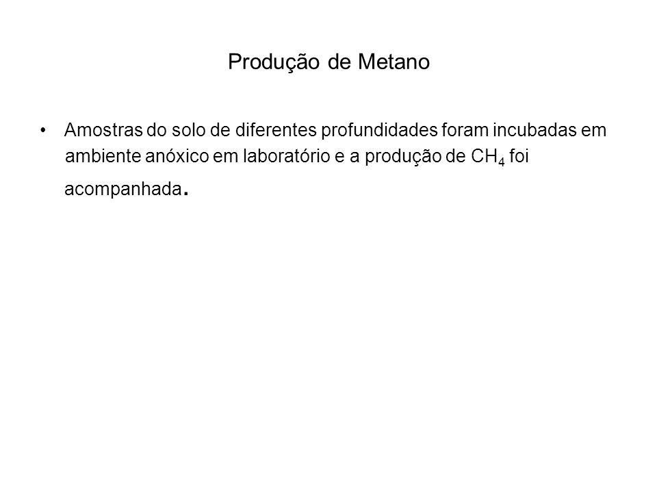 Produção de Metano Amostras do solo de diferentes profundidades foram incubadas em.
