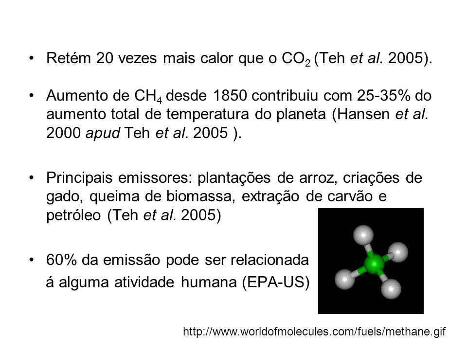 Retém 20 vezes mais calor que o CO2 (Teh et al. 2005).