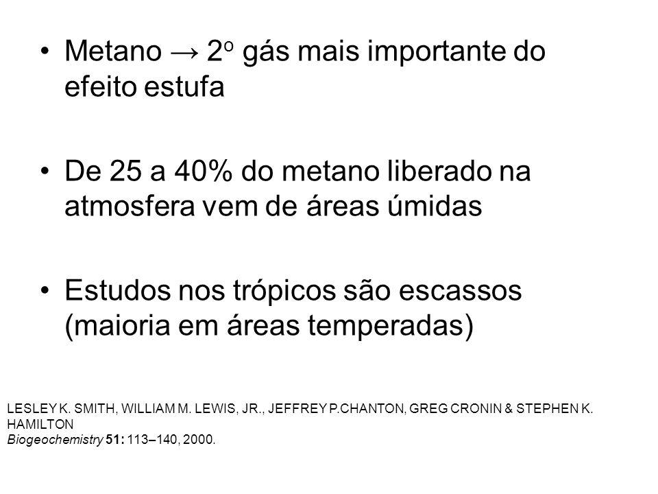 Metano → 2o gás mais importante do efeito estufa
