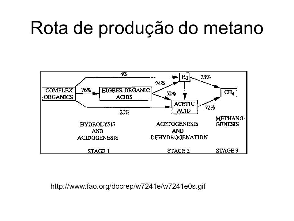 Rota de produção do metano