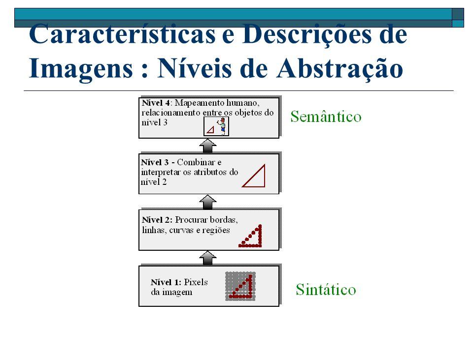 Características e Descrições de Imagens : Níveis de Abstração