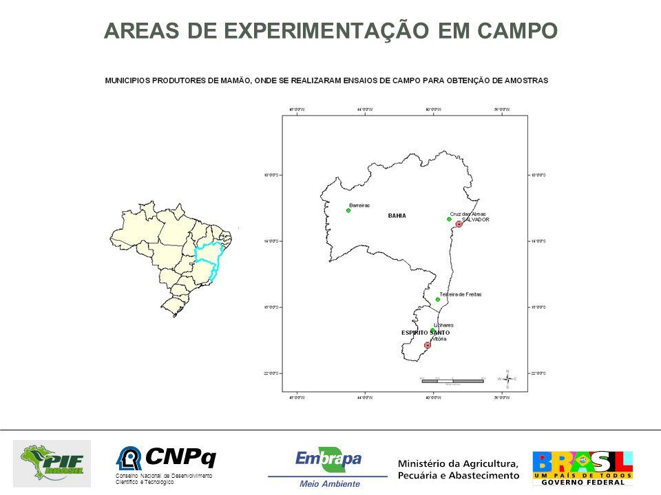 AREAS DE EXPERIMENTAÇÃO EM CAMPO