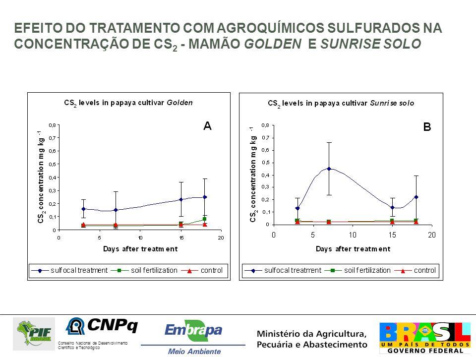 EFEITO DO TRATAMENTO COM AGROQUÍMICOS SULFURADOS NA CONCENTRAÇÃO DE CS2 - MAMÃO GOLDEN E SUNRISE SOLO