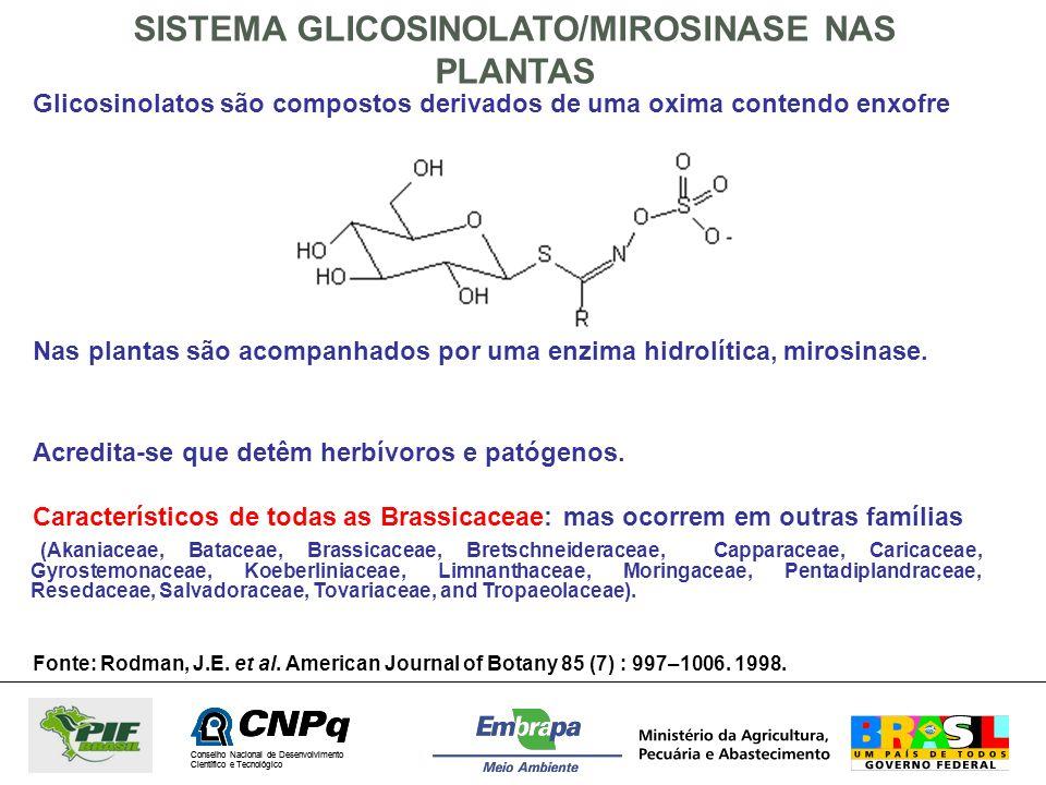 SISTEMA GLICOSINOLATO/MIROSINASE NAS PLANTAS