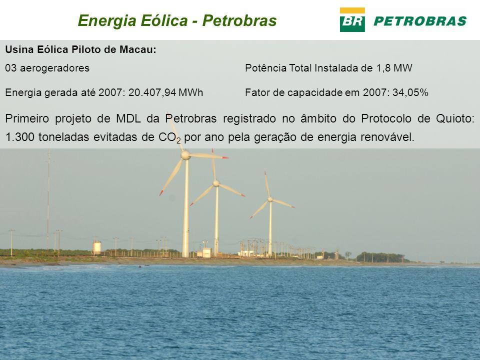 Energia Eólica - Petrobras