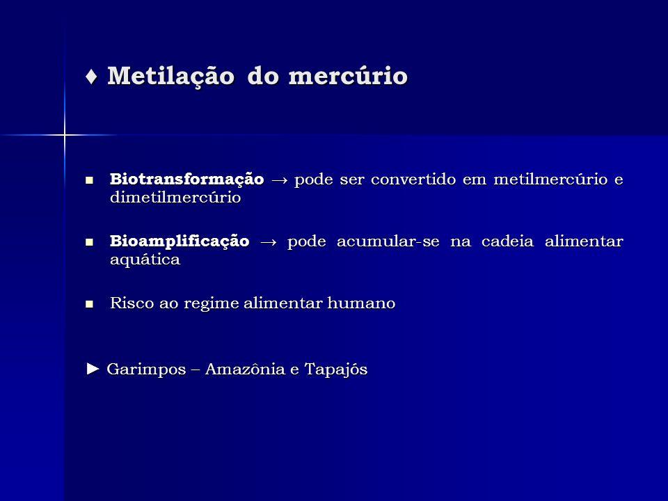 ♦ Metilação do mercúrio