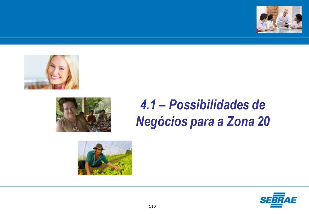 4.1 – Possibilidades de Negócios para a Zona 20