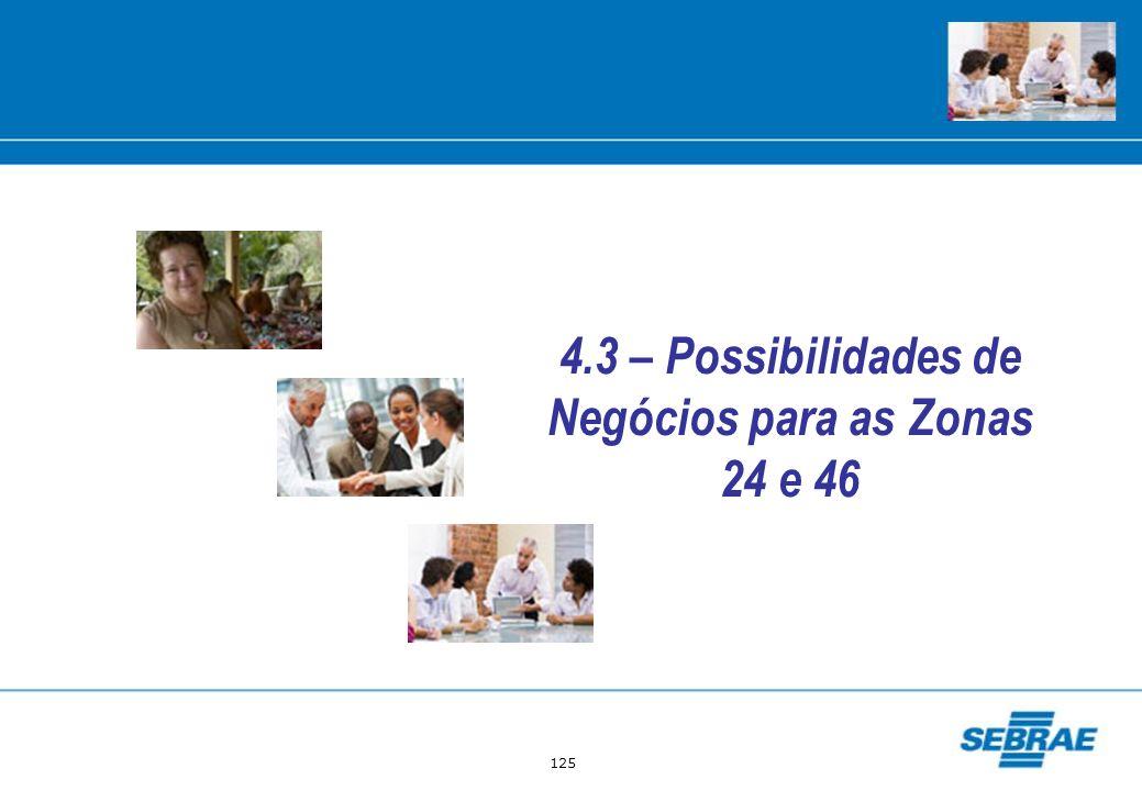 4.3 – Possibilidades de Negócios para as Zonas 24 e 46