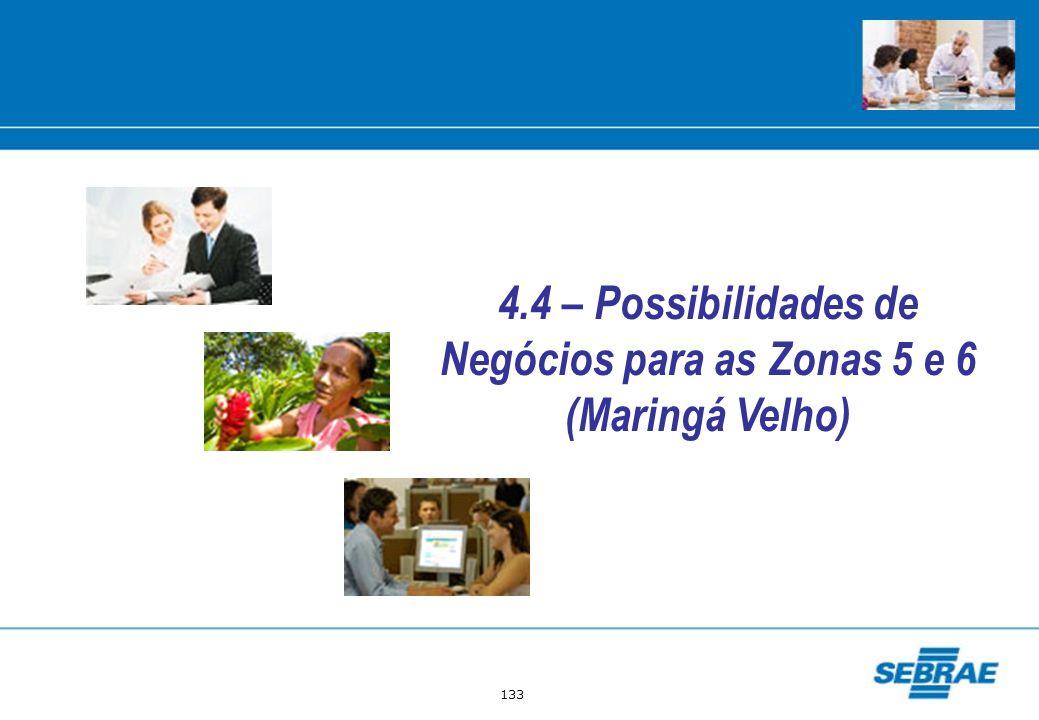 4.4 – Possibilidades de Negócios para as Zonas 5 e 6