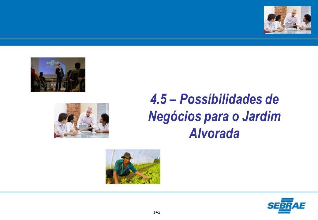 4.5 – Possibilidades de Negócios para o Jardim Alvorada