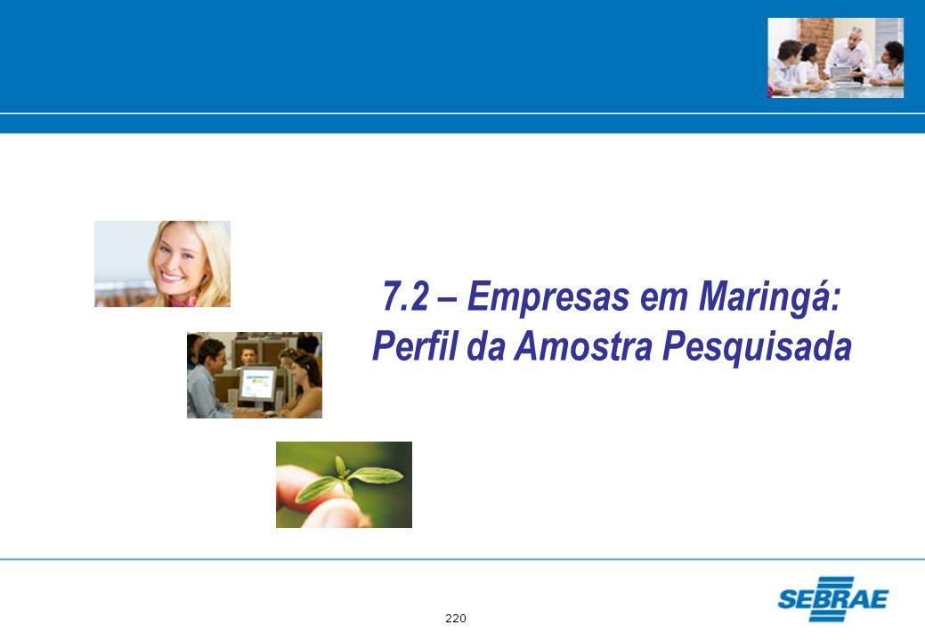 7.2 – Empresas em Maringá: Perfil da Amostra Pesquisada