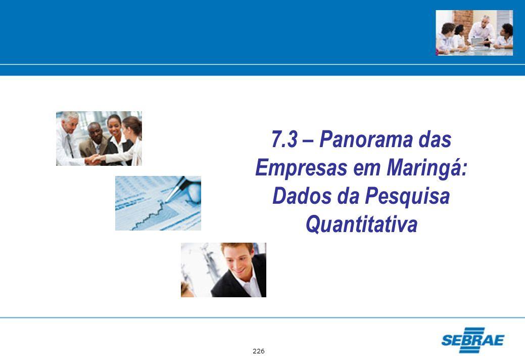 7.3 – Panorama das Empresas em Maringá: Dados da Pesquisa Quantitativa