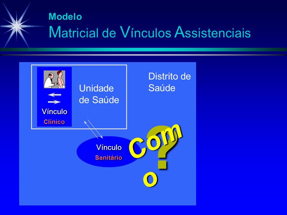Como Modelo Matricial de Vínculos Assistenciais Distrito de Saúde