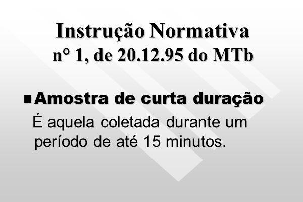 Instrução Normativa n° 1, de 20.12.95 do MTb