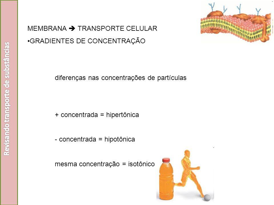 Revisando transporte de substâncias