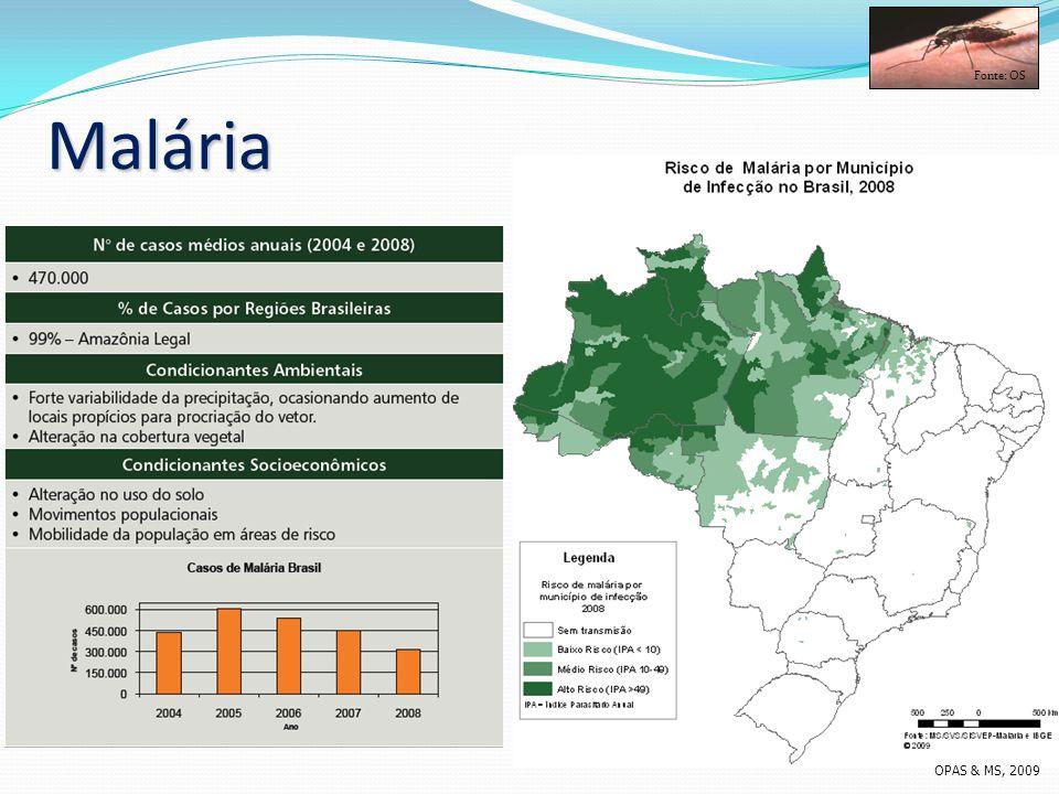 Fonte: OS Malária OPAS & MS, 2009