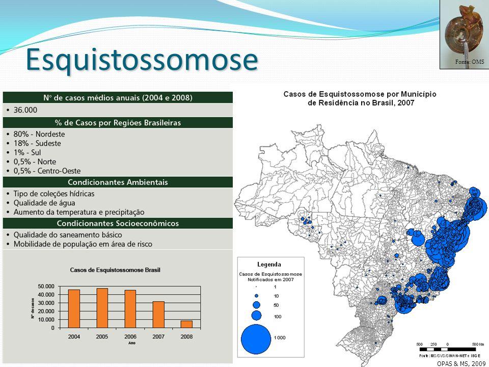 Fonte: OMS Esquistossomose OPAS & MS, 2009