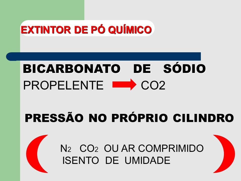 BICARBONATO DE SÓDIO PROPELENTE CO2 PRESSÃO NO PRÓPRIO CILINDRO