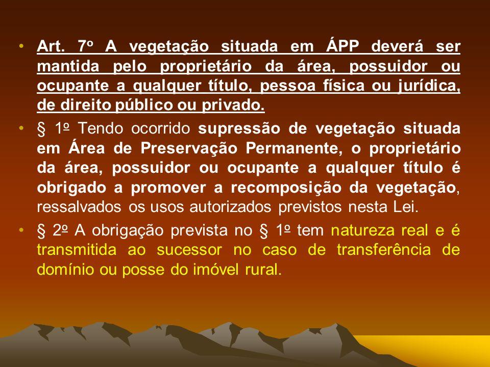 Art. 7o A vegetação situada em ÁPP deverá ser mantida pelo proprietário da área, possuidor ou ocupante a qualquer título, pessoa física ou jurídica, de direito público ou privado.