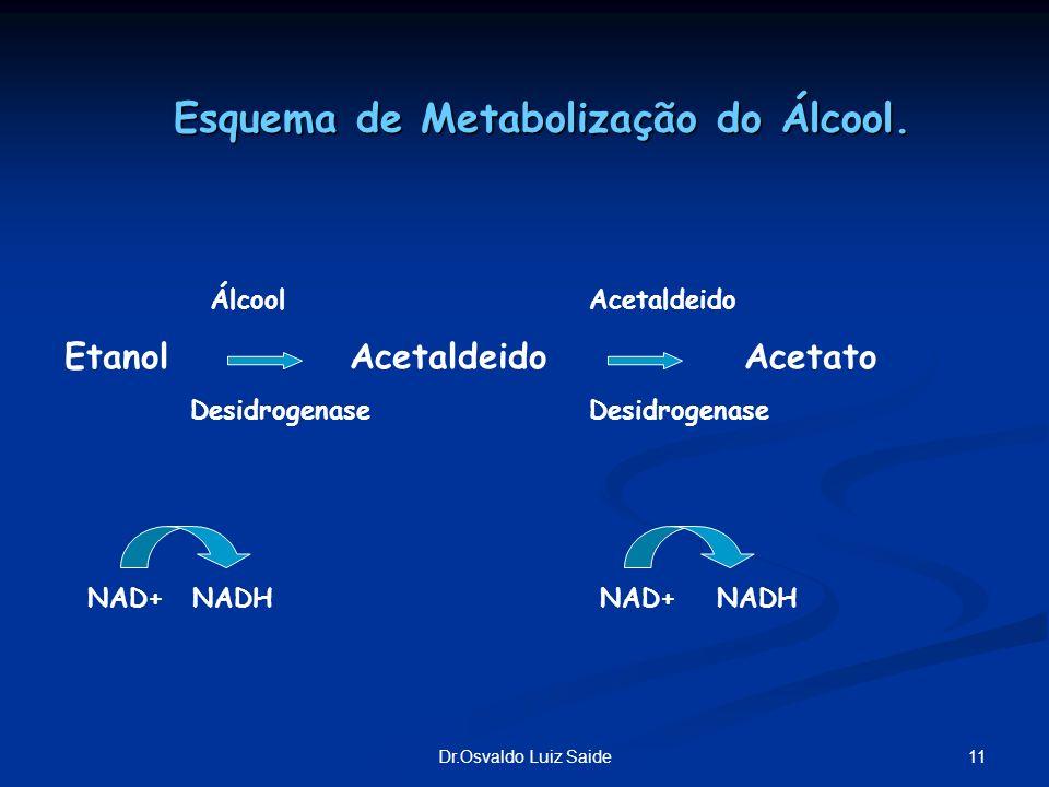 Esquema de Metabolização do Álcool.