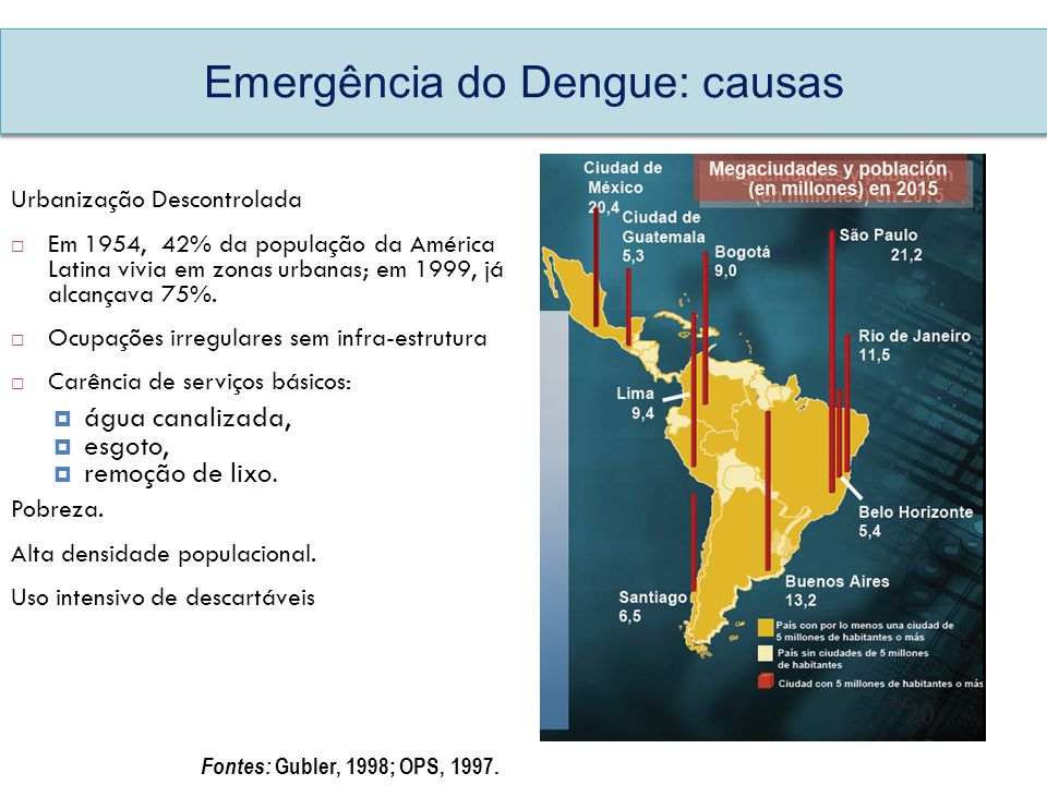 Emergência do Dengue: causas