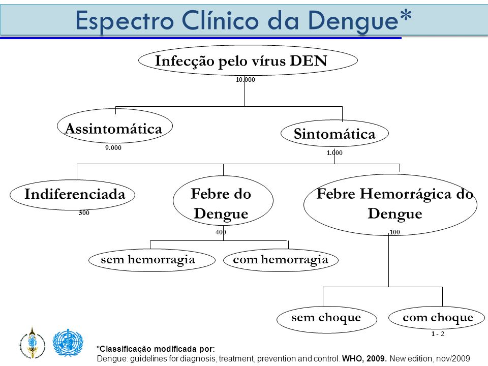 Febre Hemorrágica do Dengue
