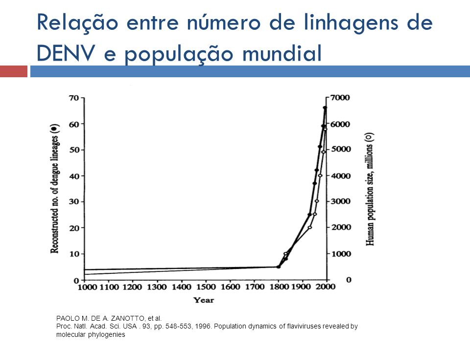 Relação entre número de linhagens de DENV e população mundial