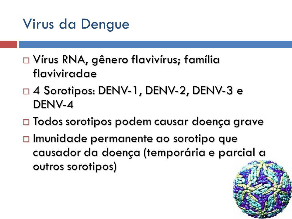 Virus da Dengue Vírus RNA, gênero flavivírus; família flaviviradae