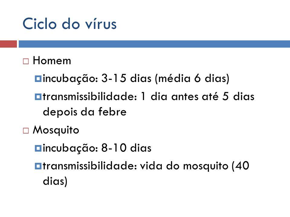 Ciclo do vírus Homem incubação: 3-15 dias (média 6 dias)
