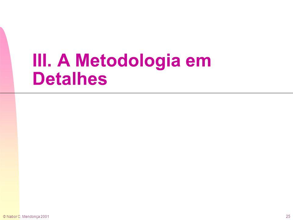 III. A Metodologia em Detalhes