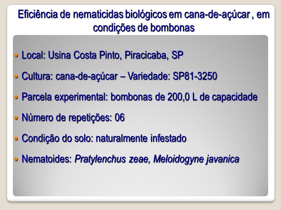 Eficiência de nematicidas biológicos em cana-de-açúcar , em condições de bombonas