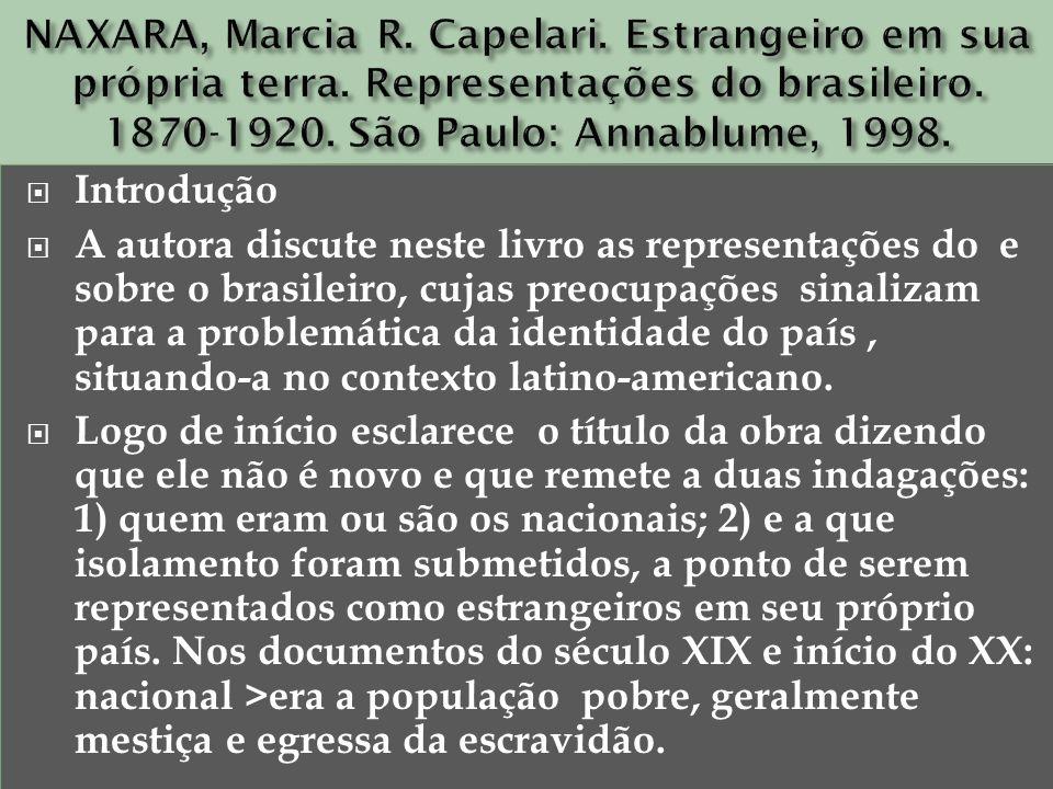 NAXARA, Marcia R. Capelari. Estrangeiro em sua própria terra