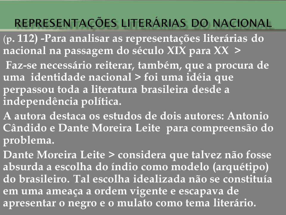 Representações literárias do nacional
