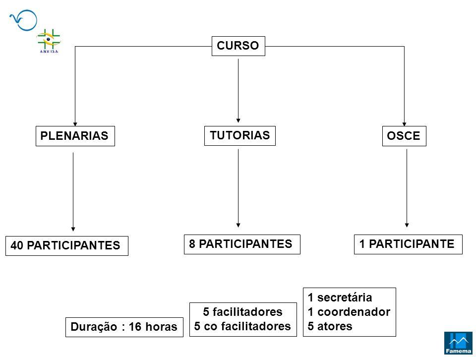 CURSOPLENARIAS. TUTORIAS. OSCE. 40 PARTICIPANTES. 8 PARTICIPANTES. 1 PARTICIPANTE. 1 secretária. 1 coordenador.
