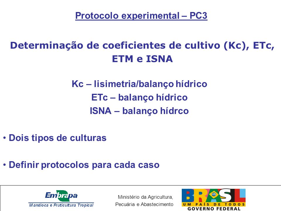 Protocolo experimental – PC3