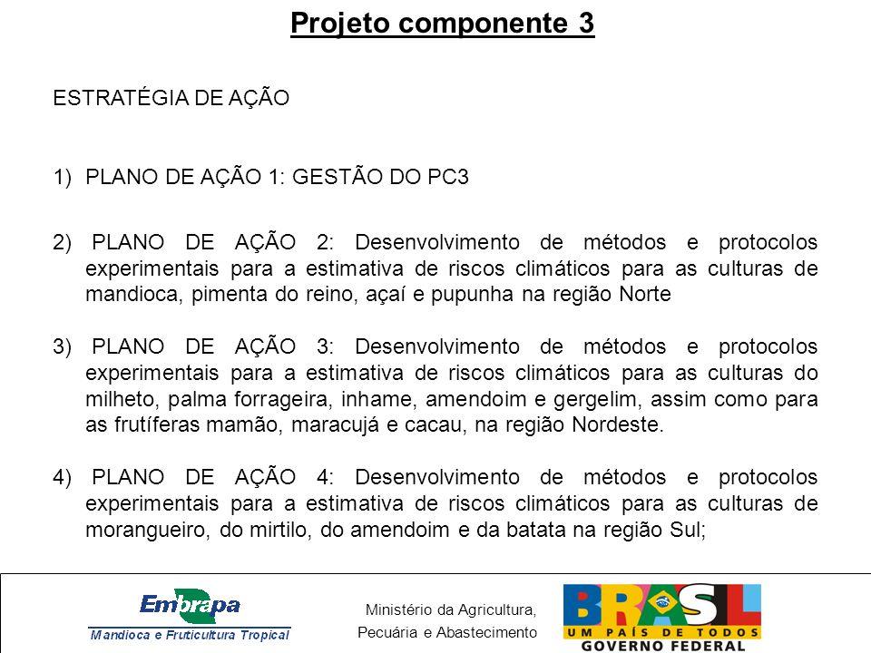Projeto componente 3 ESTRATÉGIA DE AÇÃO PLANO DE AÇÃO 1: GESTÃO DO PC3