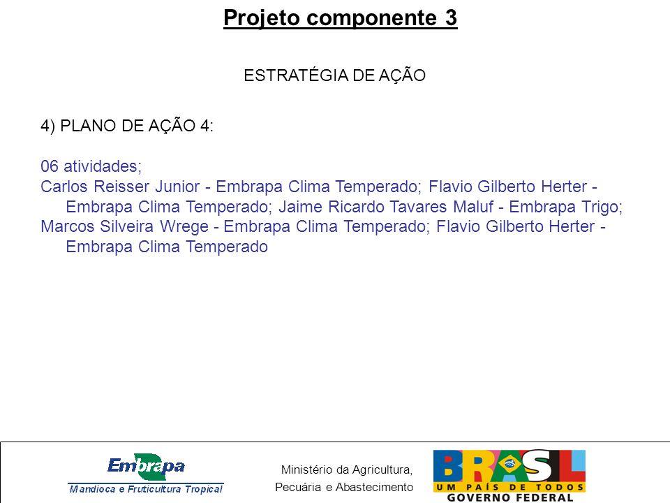 Projeto componente 3 ESTRATÉGIA DE AÇÃO 4) PLANO DE AÇÃO 4: