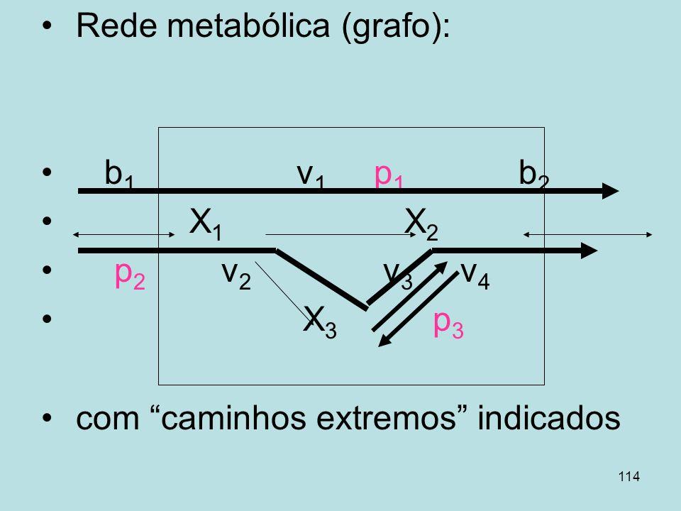 Rede metabólica (grafo):
