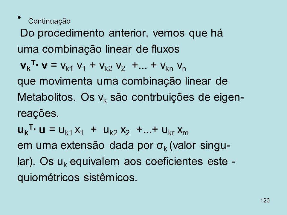 Continuação Do procedimento anterior, vemos que há. uma combinação linear de fluxos. vkT∙ v = vk1 v1 + vk2 v2 +... + vkn vn.