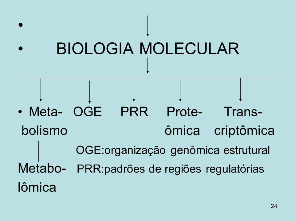 BIOLOGIA MOLECULAR Meta- OGE PRR Prote- Trans-