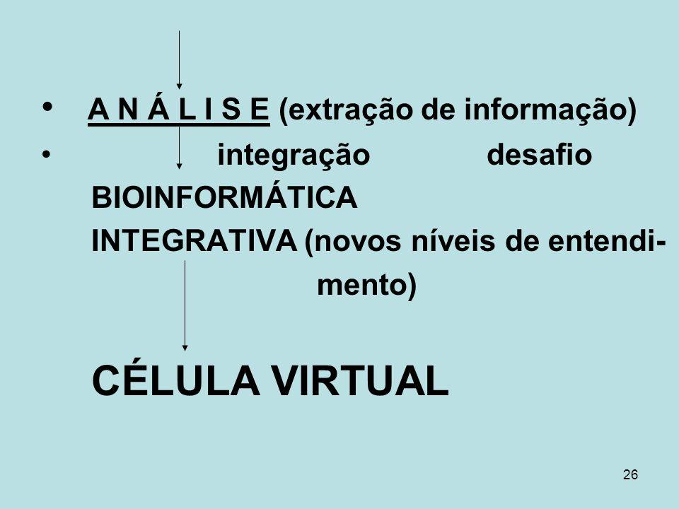 A N Á L I S E (extração de informação)