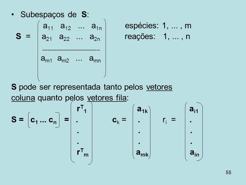 Subespaços de S: a11 a12 ... a1n espécies: 1, ... , m. S = a21 a22 ... a2n reações: 1, ... , n.