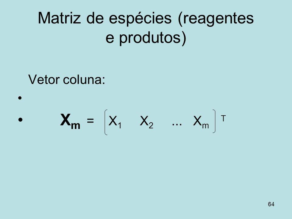 Matriz de espécies (reagentes e produtos)