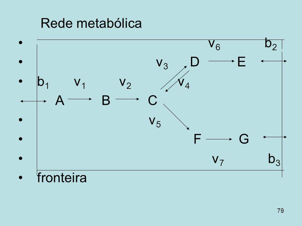 Rede metabólica v6 b2. v3 D E. b1 v1 v2 v4.
