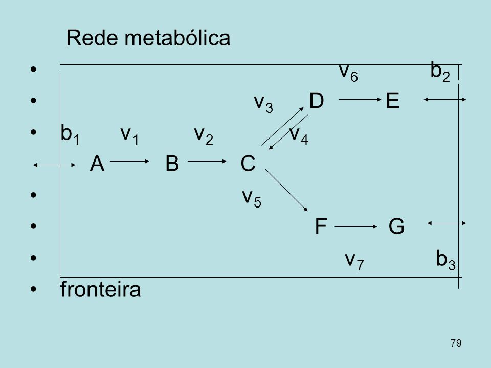 Rede metabólicav6 b2. v3 D E. b1 v1 v2 v4.